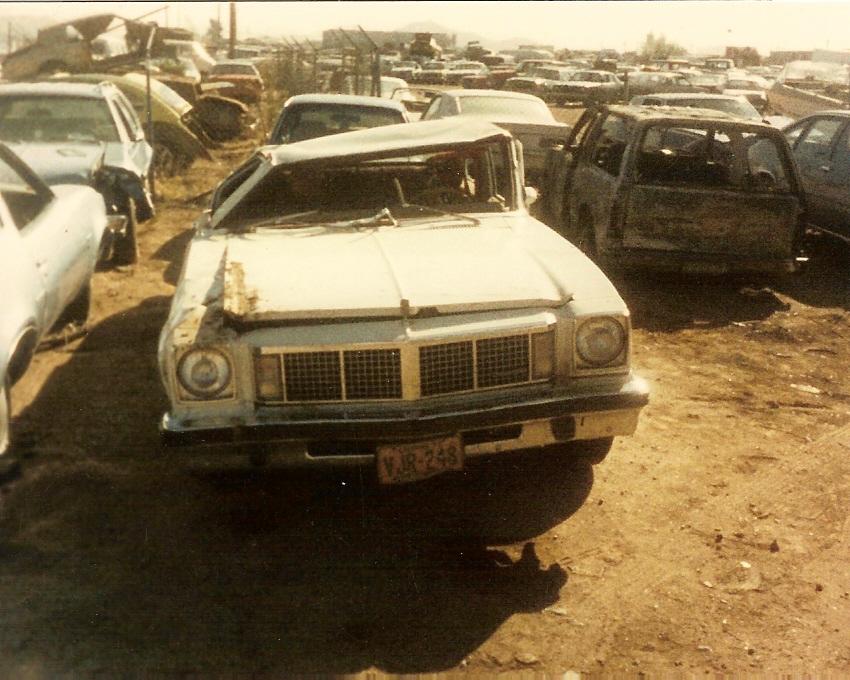 My Testimony (Pleasure, Grace and My Parent'sOldsmobile)